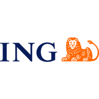 Alex Lordache, ING manager